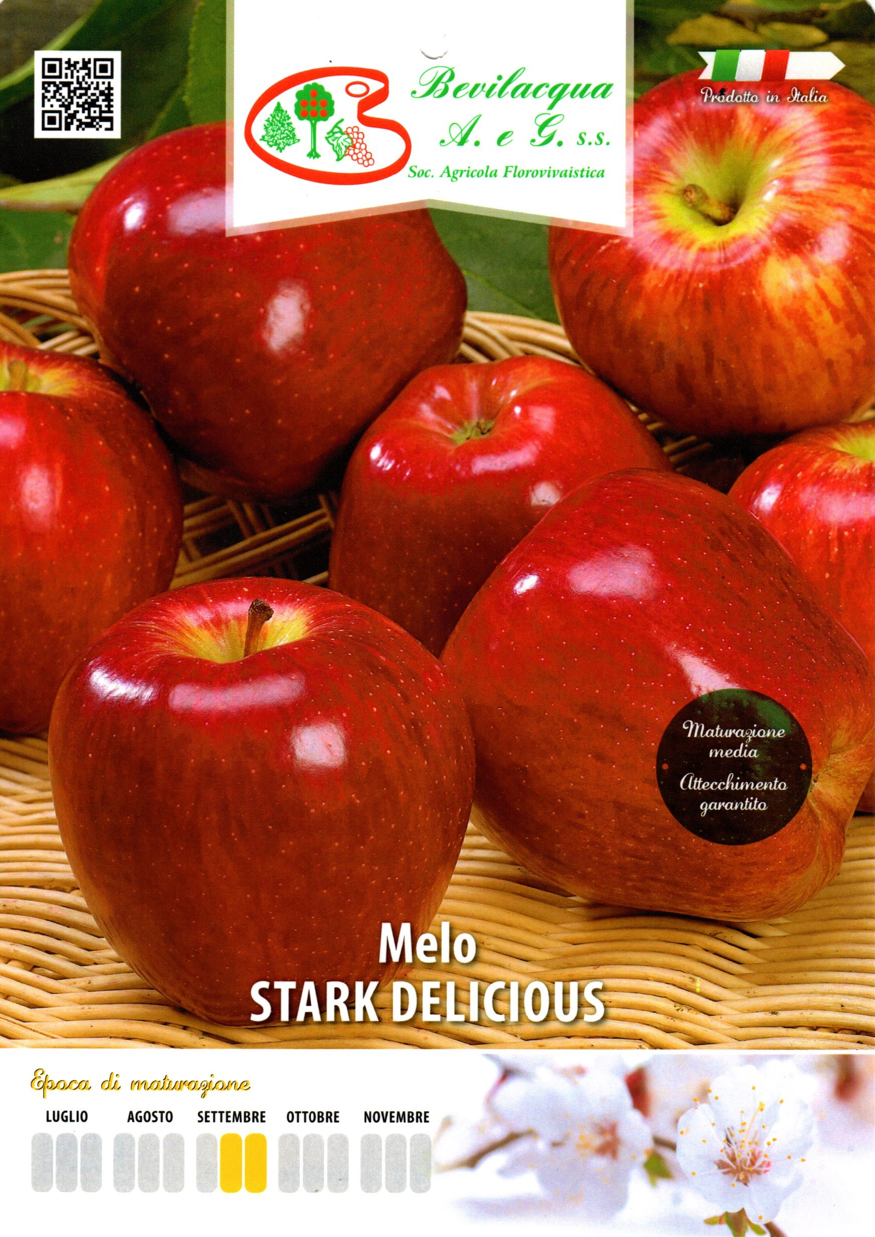 Stark Delicious