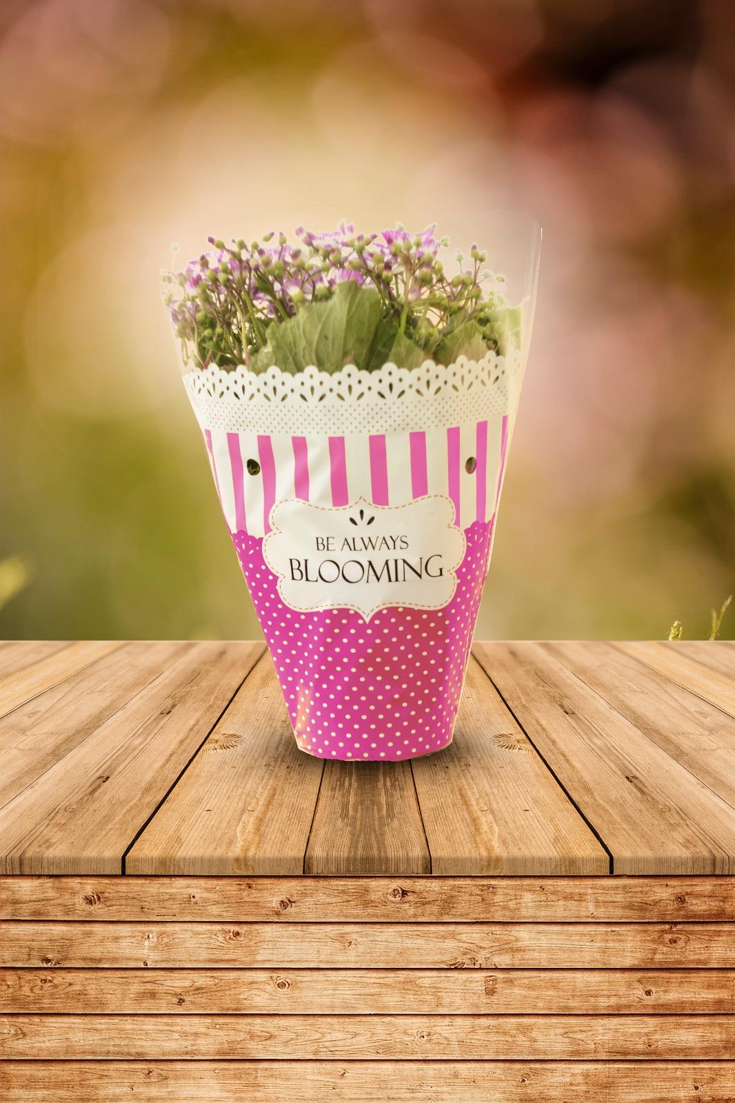Busta conica per piante fiorite