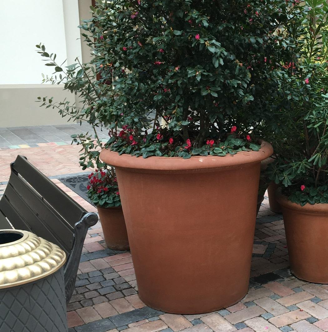 LIM Liscia vaso in terracotta