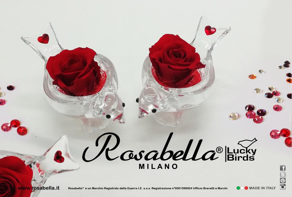 Rosabella_Lucky Birds