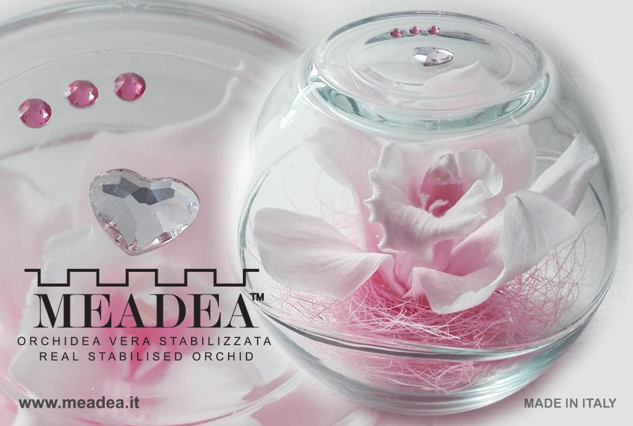 Crystal Design_Meadea