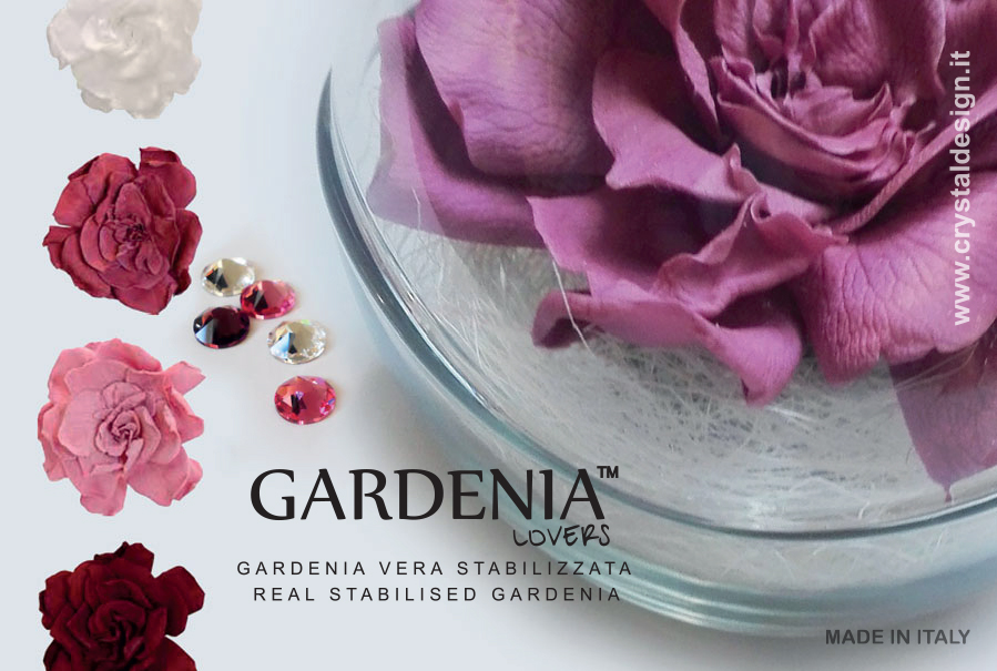 Crystal Design_Gardenia Lovers