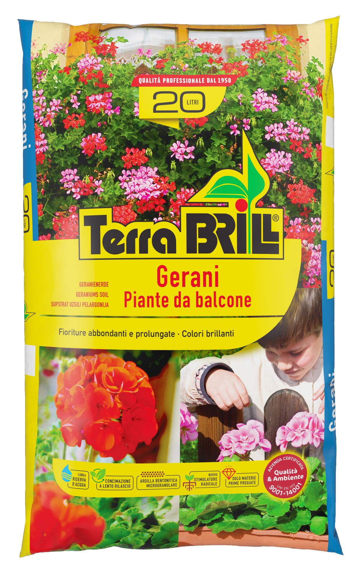TerraBrill® Gerani
