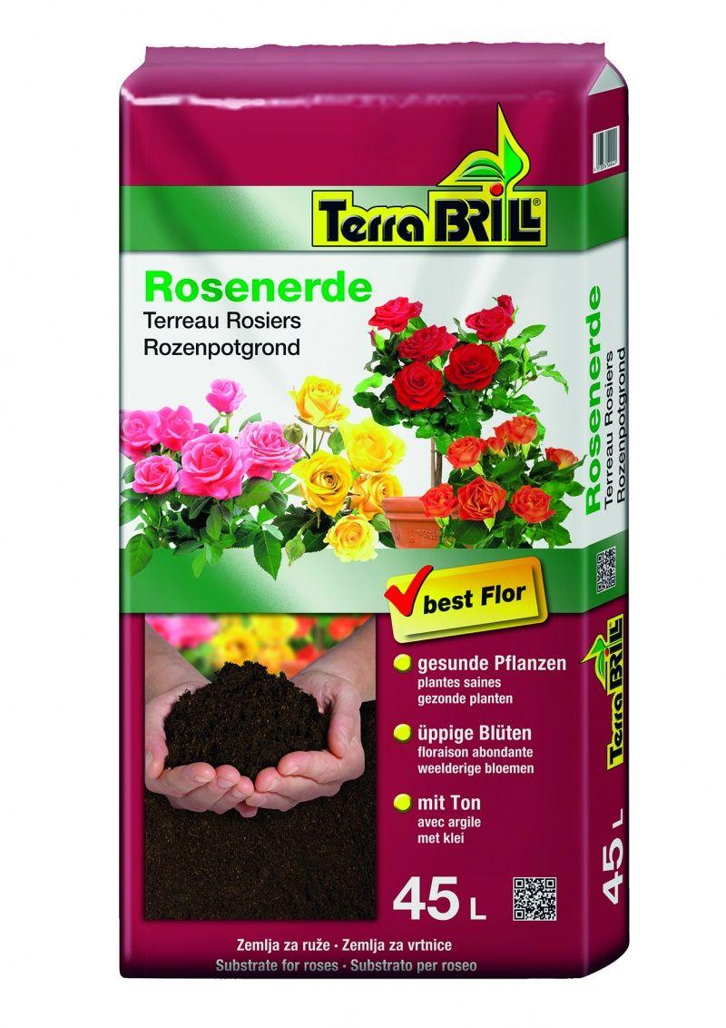 TerraBrill® Rose