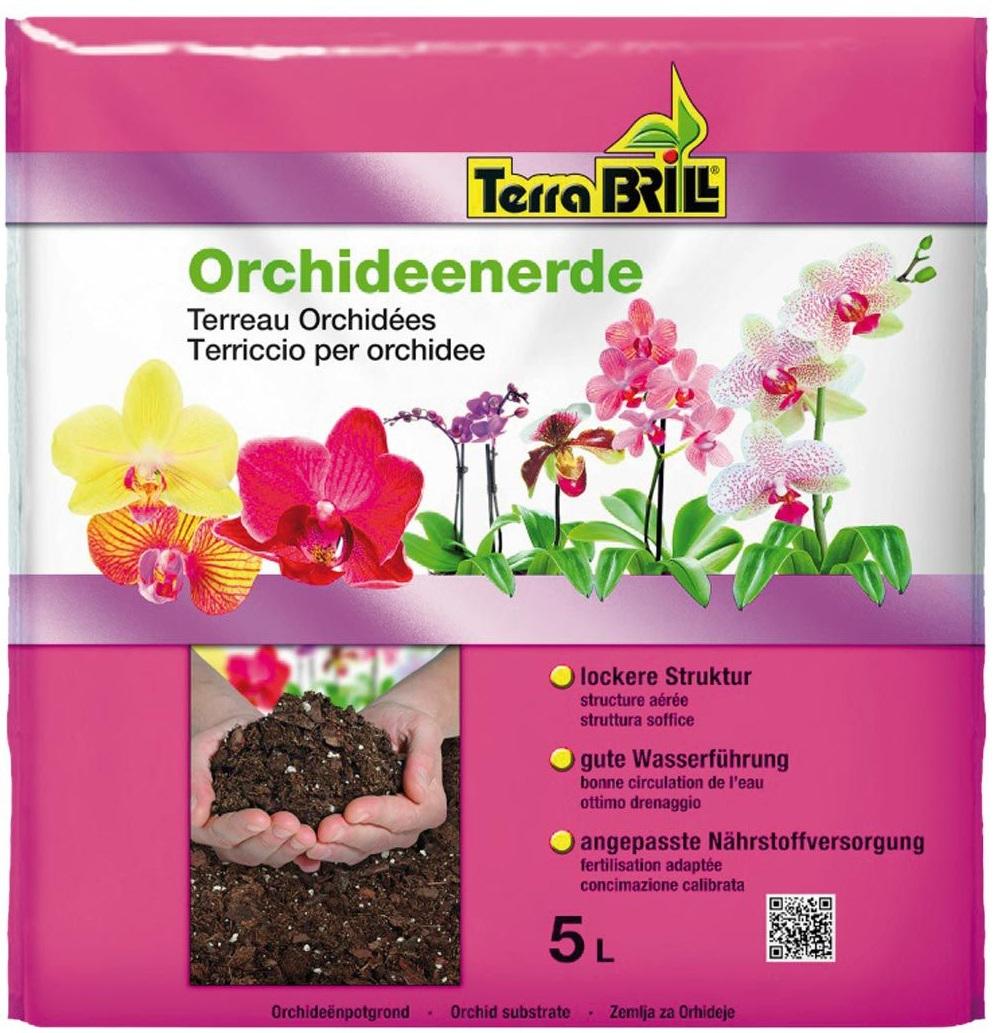 TerraBrill® Orchidee