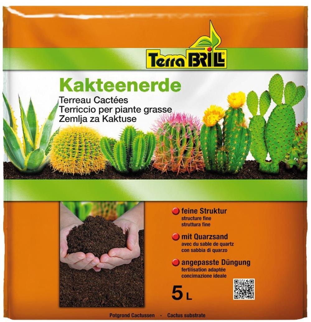 TerraBrill® Cactacee